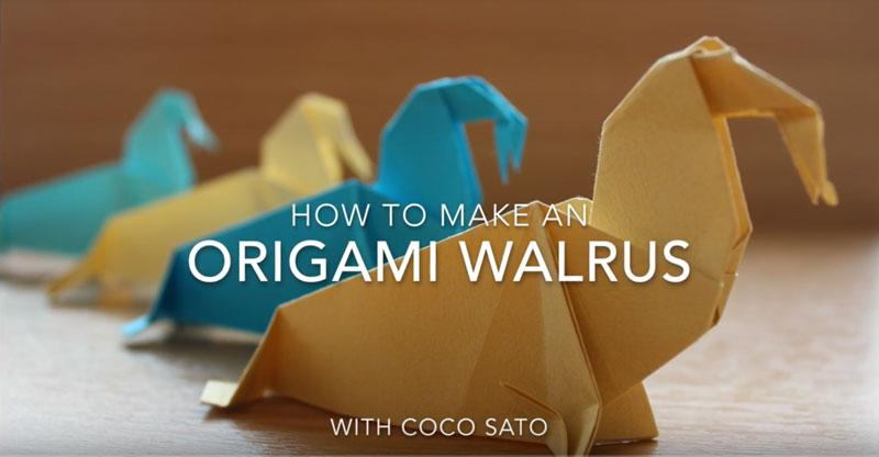 Horniman Museum & Gardens: Origami Walrus